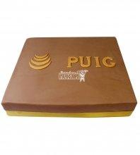 №762 Корпоративный торт для PLIG