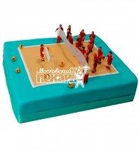 №549 Торт волейбол