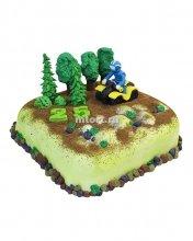№154 Торт вездеход