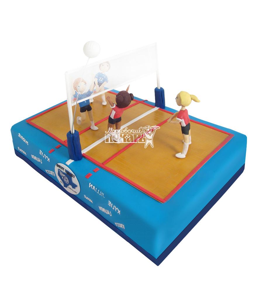 №1630 Торт волейбол
