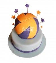 №1635 Торт волейбольный мяч