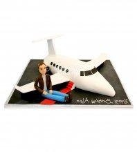 №1658 3D Торт самолет