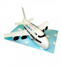№1660 3D Торт самолет