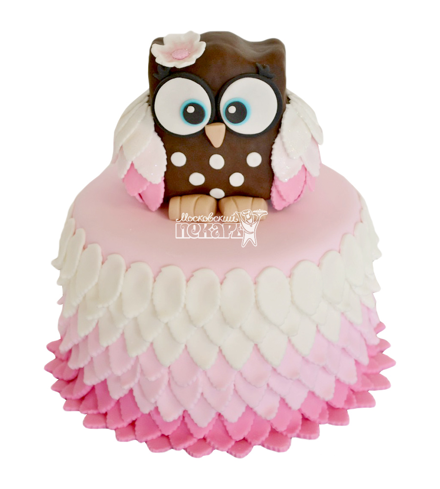 №2685 Торт сова