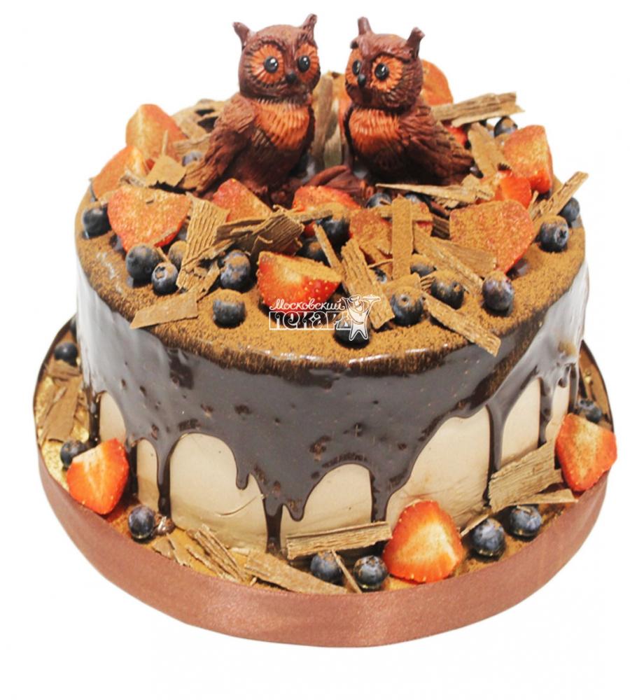 №3105 Торт с ягодами и совами