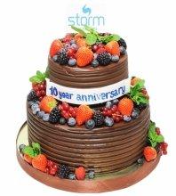 №3467 Корпоративный торт для STORM