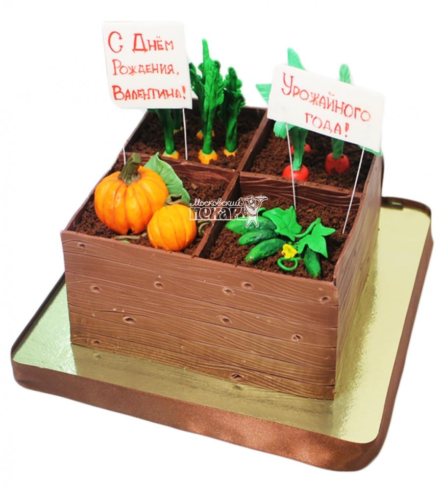 №3734 Торт огород