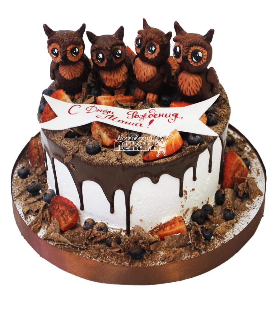 №3763 Торт с совами