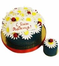 №4324 Торт на День Рождения