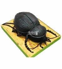 №4704 3D торт жук